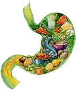 prikkelbare darm syndroom dieet
